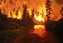 hellfire d3c13gi Copy