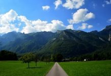 mountain-alpine Copy