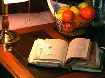 bible fruit Copy