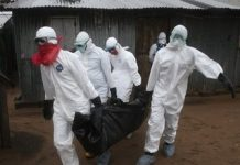 ebola-0817-horizontal-gallery Copy