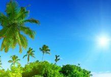 sunshine beach Copy