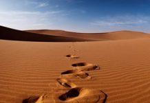 padang pasir Copy