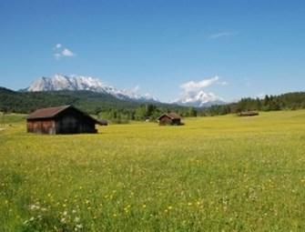 rumah-di-padang-rumput Copy