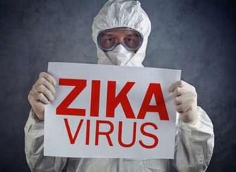 zikavirus Copy