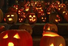 the-halloween Copy