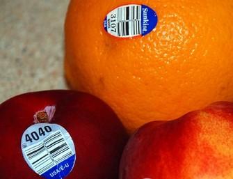 stiker buah Copy