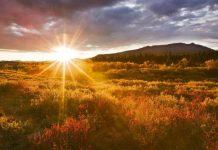 Matahari Kebenaran