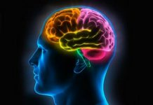 pikiran manusia Copy